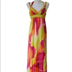 BCBGMaxazria Lime Chiffon Long Dress